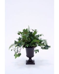 Mountain Ivy, Fern in Metal Urn