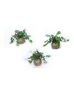 Mt Ivy in Gold Round Vases Set of 3