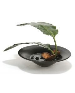 Bird of Paradise Leaves, Pods in Black Glazed Ceramic Saucer