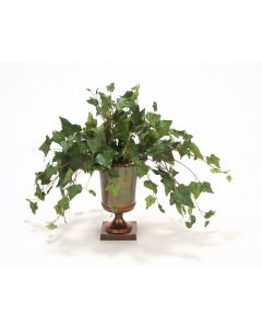 Mountain Ivy in Classic Urn