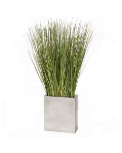Grass in Silver Cube Planter