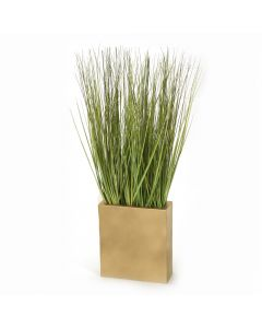 Grass in Gold Cube Planter