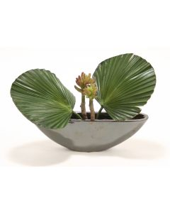 Fan Palm and Succulents in Black Metallic Oval Ceramic Planter