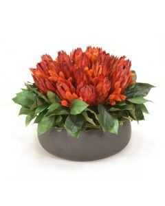 Red Repens Mixed with Phalaris and Foliage in Low Round Black Wash Planter