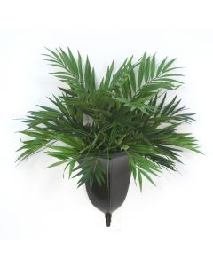 Palor Palm in Wall Sconce