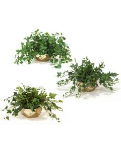 Greenery Assortment in Gold Fusion Bowl (Set of 3)