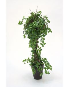 Mini Ivy Topiary in A Stoneware French Pot