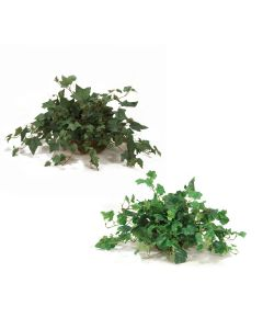Greenery Assortment in Saucer- Set of 2