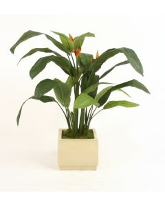 Heliconia Leaf Floor Plant in Square Ivory-Glazed Stoneware