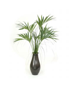 Kentia Palm Tree In Gunmetal Floor Planter