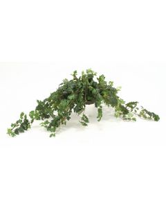 Topper With Silk Danica Ivy Desk Top Plant in Saucer