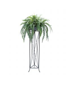 Boston Fern in Stone Bowl in Large Plant Stand