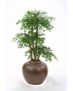 Japanese Maple Floor Plant in Brown Tapayan Jar