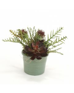 Burgundy and Sage Succulents & Thistle in Teal Clay Pot