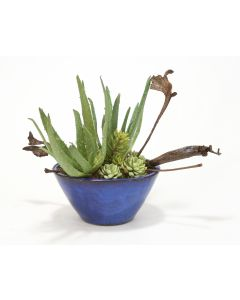 Aloe Plant, Succulents, Hen and Chickens and Natural Natrag in Small Oval Blue Bowl