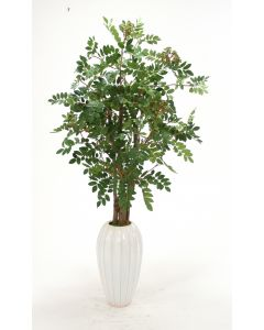Mountain Ash Floor Plant in Tall White Fluted Ceramic Vase