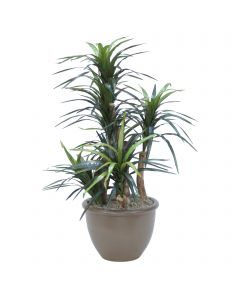 4ft. Dracaena Tree in Tan Ceramic Planter