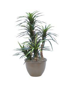 4ft. Dracaena Tree in Tan Ceramic Planter