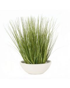 Green Grass in White Oval Planter