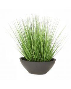 Green Grass in Black Oval Planter