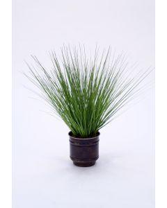 Grass In Round Metal Bronze Pot