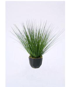 Green Grass in Matte Black Hexagon Metal Planter