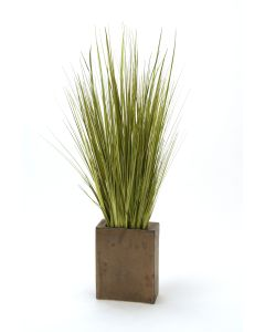 Sage Green Grass Mix In Tapered Crystal Bronze Vase