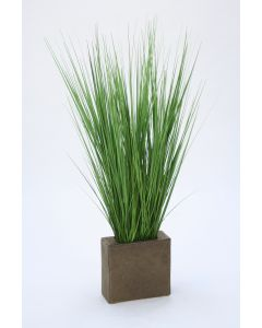 Grass In Rectangle Metal Planter