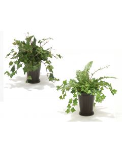 Mini Ivy And Mountain Ivy Assortment In Bronze Mint Julep Pot (Set Of 4)