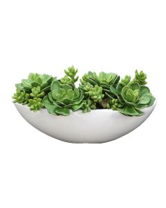 Succulents and Hen-N-Chickens in White Oval Ceramic Planter