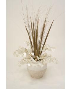 Money Plant W Natural Grass in Matte White Ceramic Pot