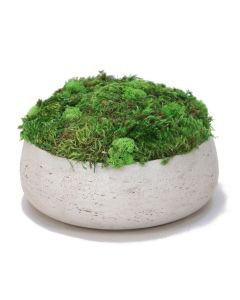 Moss planting in Grey Fiberstone Bowl