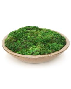 Mood Moss in Glazed Stoneware Bowl