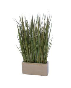 Natural Grass Blades in Rectangle Mocha Planter