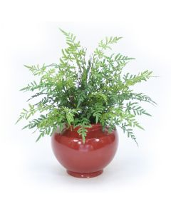 Natural Touch Fern Bush in Rust Red Planter