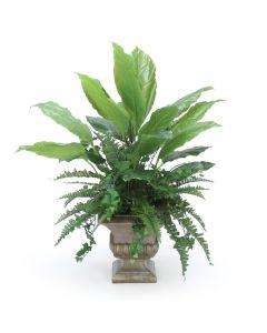 Greenery in Classic Urn