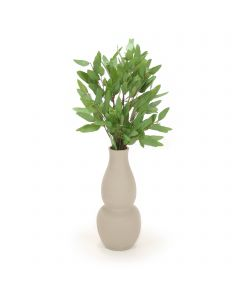 Eucalyptus in Gray Vase