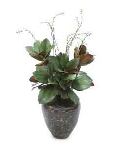 Magnolia Leaves in Vase