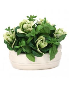 Kale with Basil in White Oval Planter
