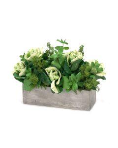 Kale Mix in Window Box