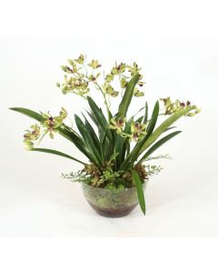 Green Vanda Orchids, Maiden Hair Fern in Glass Bowl