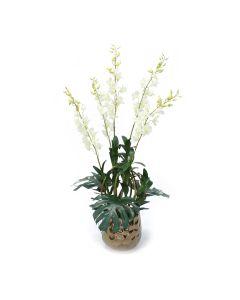 White Dendrobium Plants in Gold Gabbi Planter