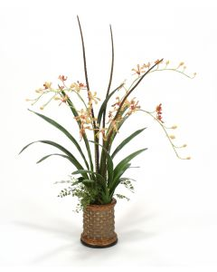 Gold Vanda Orchids with Mixed Foliage in Cylinder Planter
