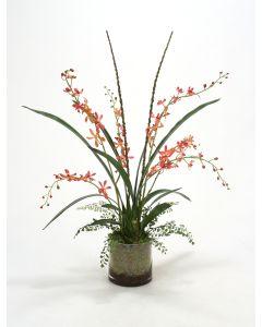 Coral Vanda Orchid Garden in Glass Round Bowl