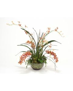 Orchid Garden in Glass Bowl