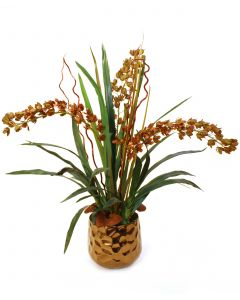 Brown Yellow Dendrobiums with Foliage in Gold Gabbi Container