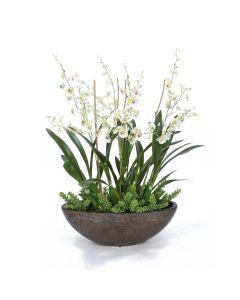 Succulent and Orchid Garden in Bronze Ceramic Planter