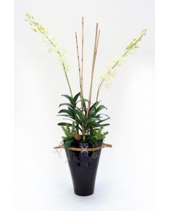 White Orchids in Large Black Fuji Vase