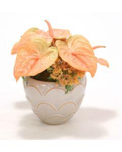 Orange Anthuriums in Cream Ceramic Vase