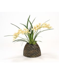 Cream White Orchids in Black Bamboo Pocket Vase